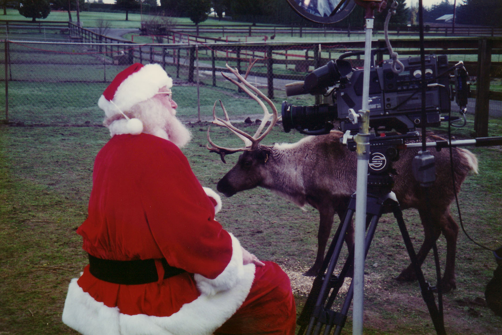 Promo shoot with Santa and one of his reindeer